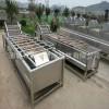 箬竹叶粽叶清洗机 不锈钢多功能第二代高效粽叶清洗设备